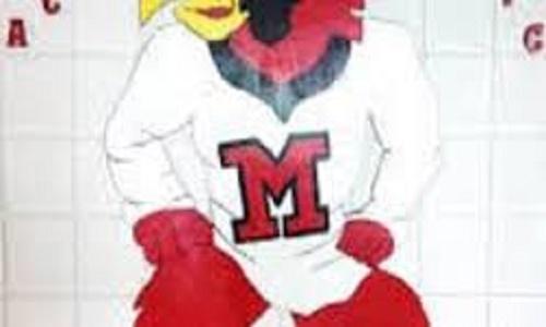 Mercer Cardinals
